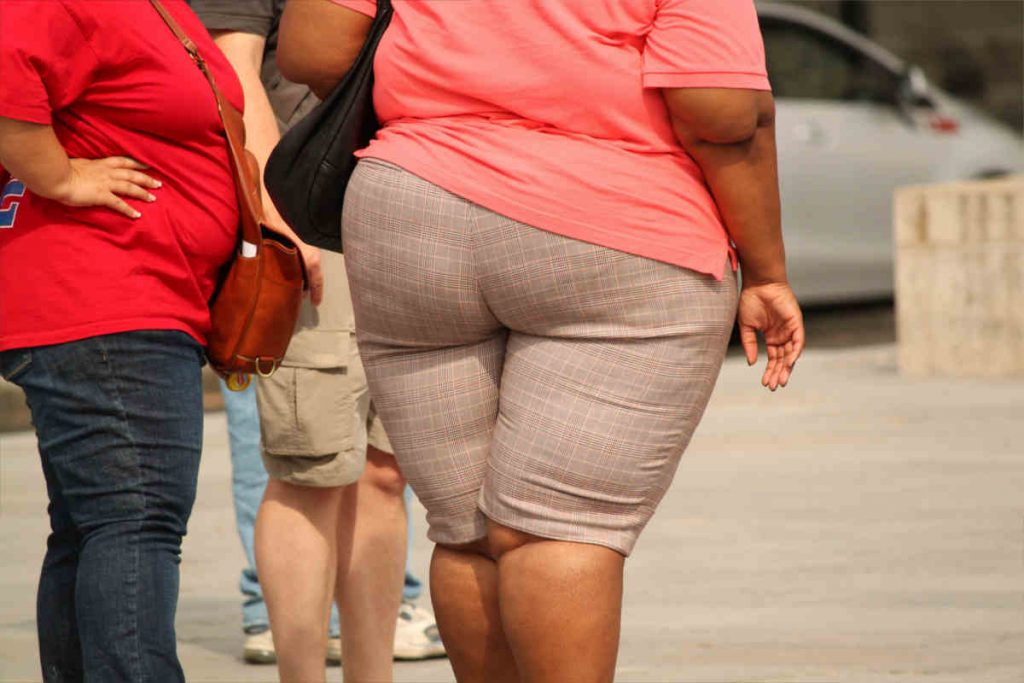 Why we get fat, overweight and obese