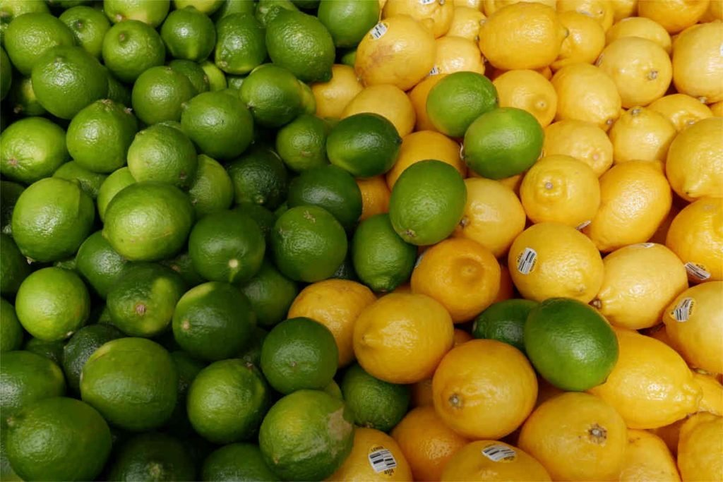 citrus fruit are full of vitamin c which helps iron absorption