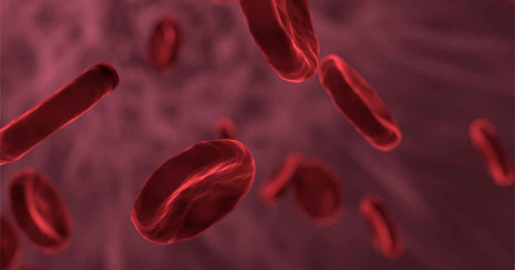 iron deficiency can lower red blood cell production