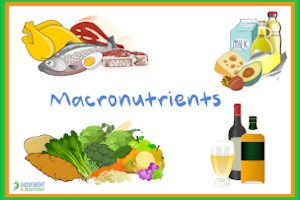 What are Macronutrients? A healthy eating guide to protein, fat and carbs