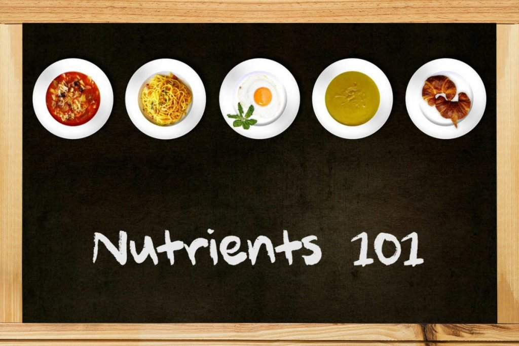 Nutrients-101-blackboard