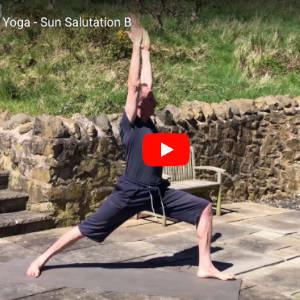 Lockdown Yoga - Sun Salutation B